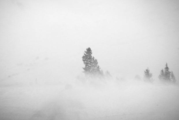 blizzard blind