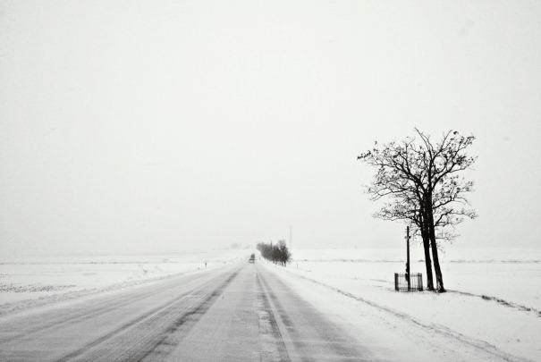 blizzard lane