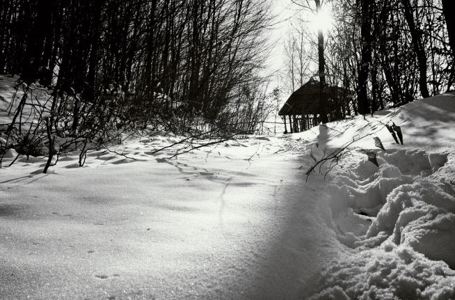 bw snow time