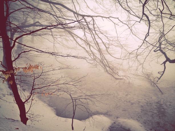 foggy frozen lake