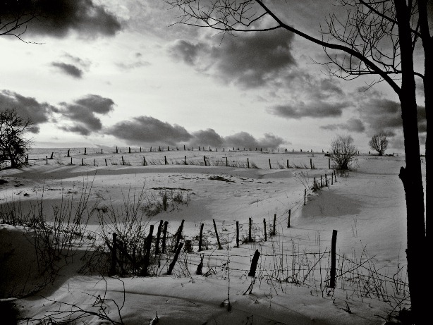 rural snow bw