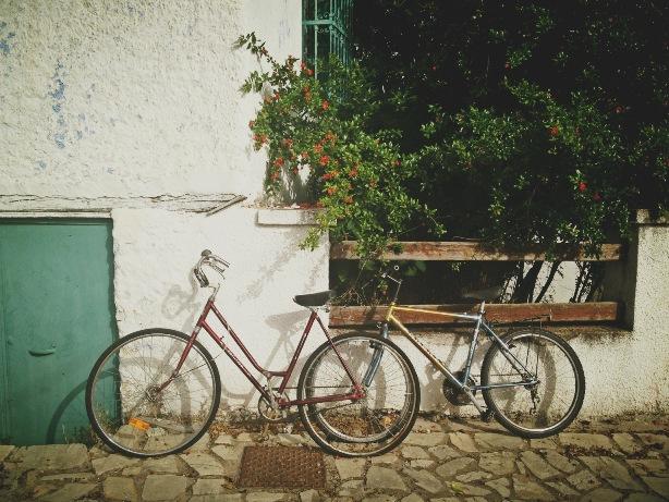 biciclete pereche