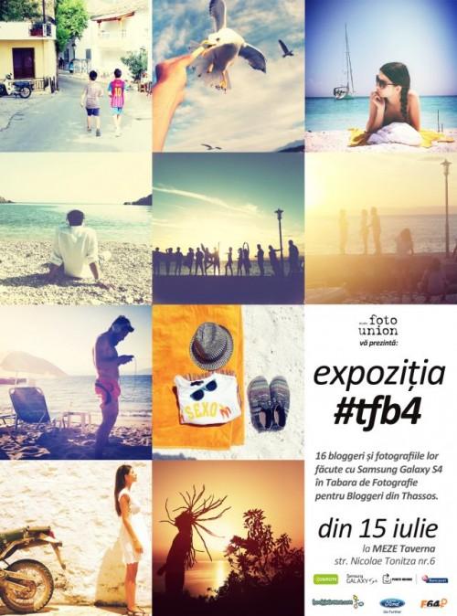 expozitie-tfb4-500x674