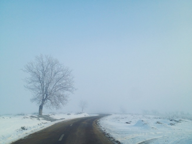 curvy road to foggy end